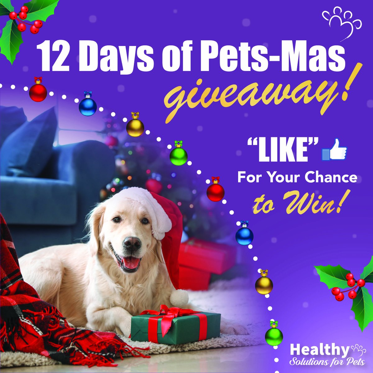 #Day3 of our #12Days of Pets-Mas #Giveaway is happening now!! ❤️ & RT for your chance to win a $25 Healthy Solutions for Pets gift card! Winner announced 6pm tonight!  Good Luck......ENTER NOW  #12Daysofgiveaways #dogsoftwitter #dogs #CatsOfTwitter #cats #Pets #dogmom #catmom https://t.co/YYJHyFjcsn