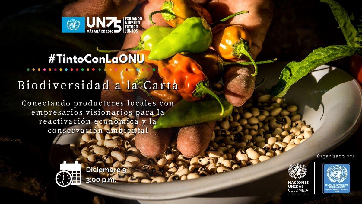 En el próximo #TintoConLaONU tenemos un menú en el que hablaremos de productos de la biodiversidad de 🇨🇴. Rifaremos 2️⃣ anchetas y uno de los chefs de Celele en Cartagena, compartirá #EnVivo 1⃣receta.  🗓Dic 9,🕐3 P.M.  Confirma tu asistencia👉  #ONU75 #UN75