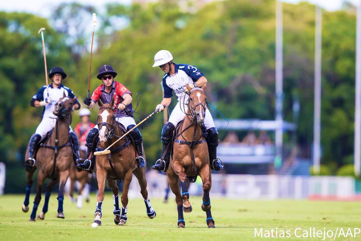 Palermo @asocdepolo  @PoloArgentinotw
