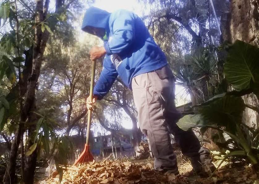 """¡¡¡EN EL INAH EdoMex SEGUIMOS TRABAJANDO!!!  Labores de limpieza en la Zona Arqueológica de Santa Cecilia Acatitlán y Museo de la Escultura Mexica """"Eusebio Dávalos Hurtado""""; ubicados en Tlalnepantla, Estado de México.  #ContigoEnLaDistancia #AccionesINAHEdoMex https://t.co/QsxwHWGPqe"""