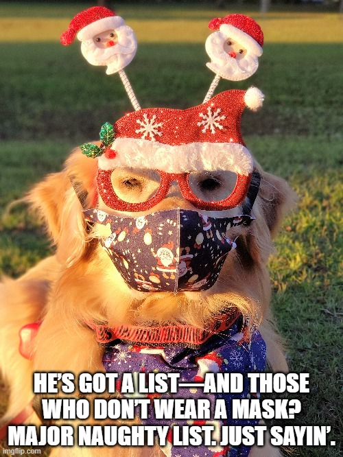 He's got a list—and those who DON'T #WearAMask? Major Naughty List. Just sayin'.  #MasksSaveLives #SocialDistancing #washyourhands #AvoidCrowds #facemask #COVID19 #coronavirus #GRC #SantaClaus #Santa #Christmas #foodallergies #dogsoftwitter https://t.co/Av7t1tQgk4
