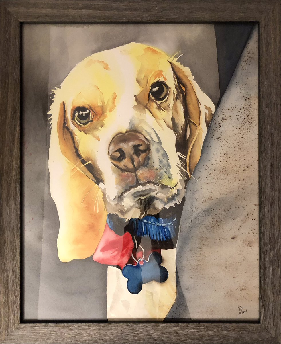 These are two watercolor paintings of beagles in the family. Abe is peeking over the bottom of the frame and Forrest is looking over a shoulder. It is so nice to be back painting. #art #watercolorpainting #beagle #dogs https://t.co/Y0i2hACfmS