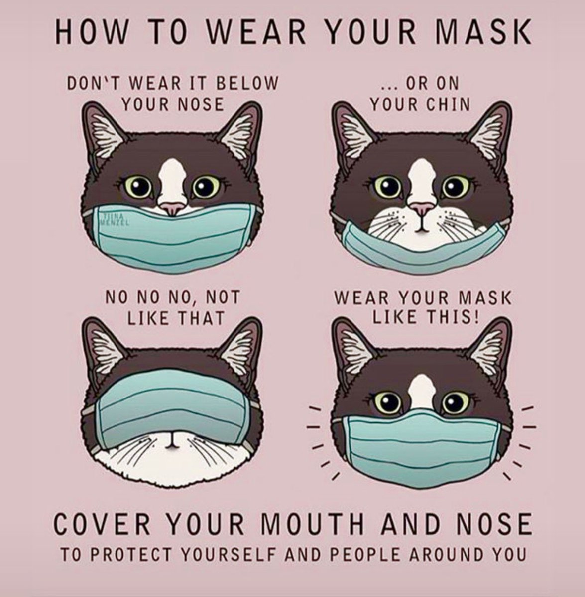#MyMaskCovers #CatsOfTwitter