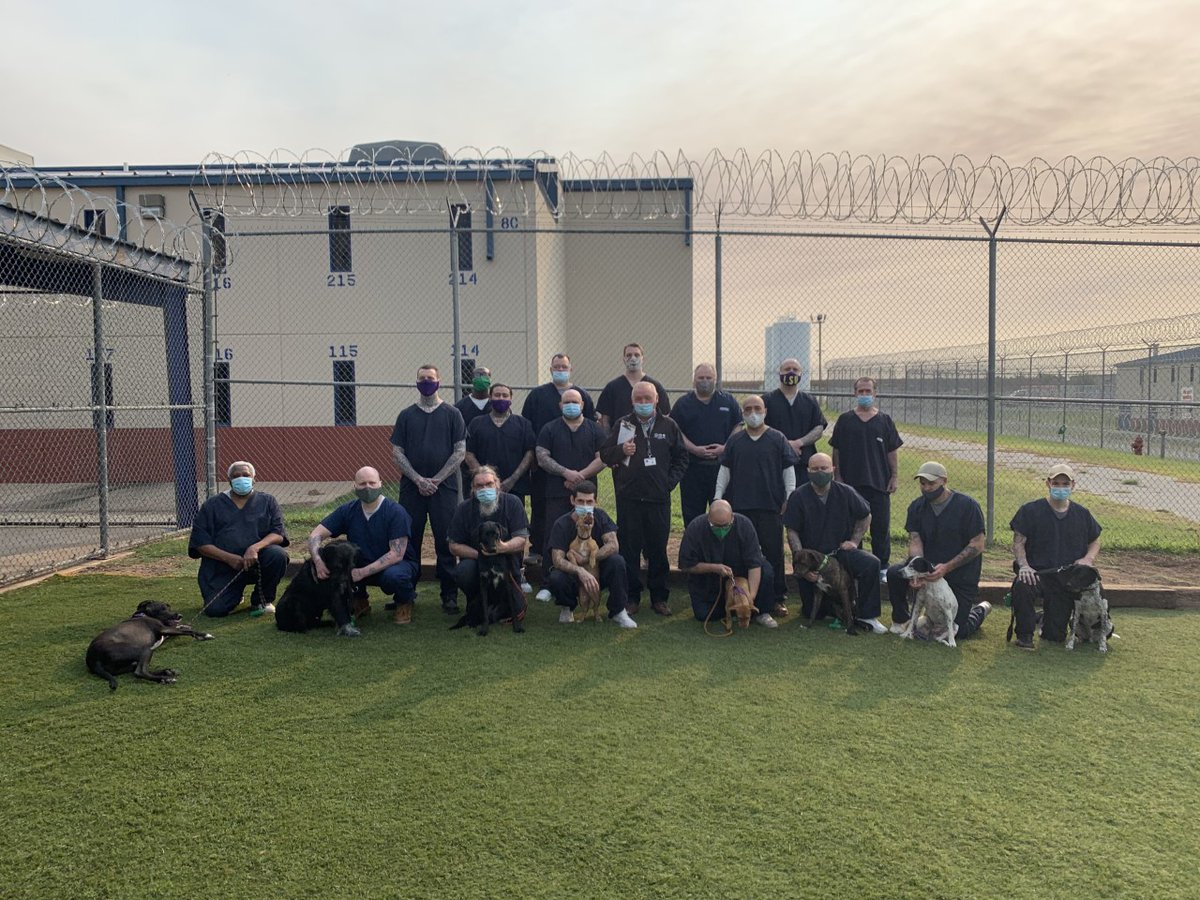 A K-9 training program at GEO's Lawton Correctional and Rehabilitation Facility saves the lives of both puppies and their handlers. https://t.co/PXaXUa25J1 https://t.co/oDOt9Wbq8F