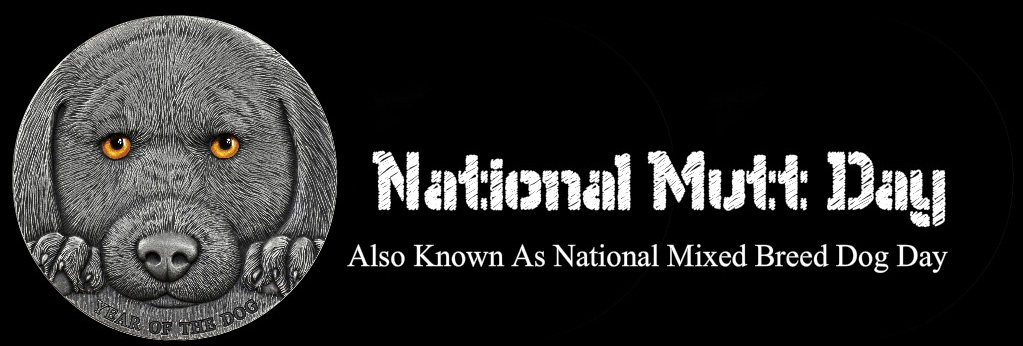 December 2 = National Mutt Day AKA National Mixed Breed Dog Day #OTD we celebrate the intelligence and warmth associated with our humble, loyal and ever-reliable pets. #NationalMuttDay #MuttDay #NationalMixedBreedDogDay #MansBestFriend #Dog