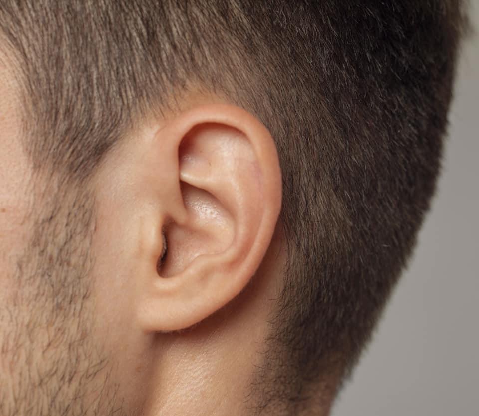 耳 毛 脱毛