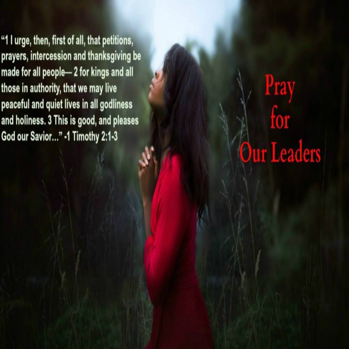 'Praying for Those in Authority' [  ] We must pray for ourselves, each other and especially for our leaders. At some point in our life, we will need someone to pray for us! #inspiration #Motivation #prayer #leadership #leaders #biblical #FranklinGraham