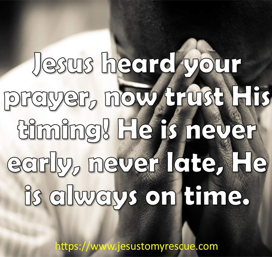 Hi all. Today I want to remind you that Jesus hears every prayer, have faith and don't give up! God bless you.  #faith #time #godstime #godstiming #prayer #trust #hope #motivation #jtmr #jtmrministries #jesustomyrescue #jesus #christian #christianfacebook