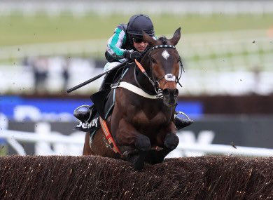 Can't wait to see my favourite horse out tomorrow. He needs no introduction, he's getting older but hoping he still retains all his ability. The horse that got me into racing and what a star he's been❤️🐎 #altior #horseracing #thebest