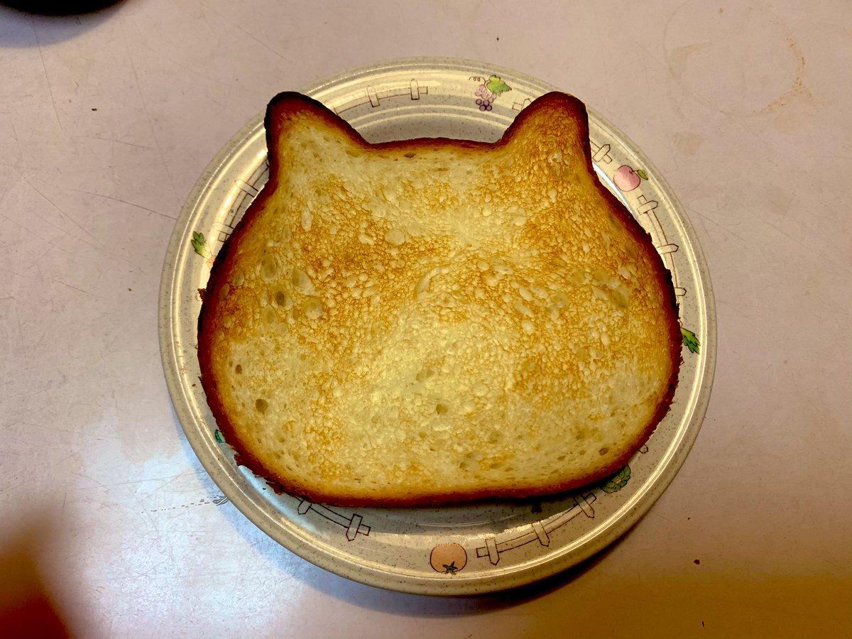 ネコ耳の食パンがあったから顔を描いた