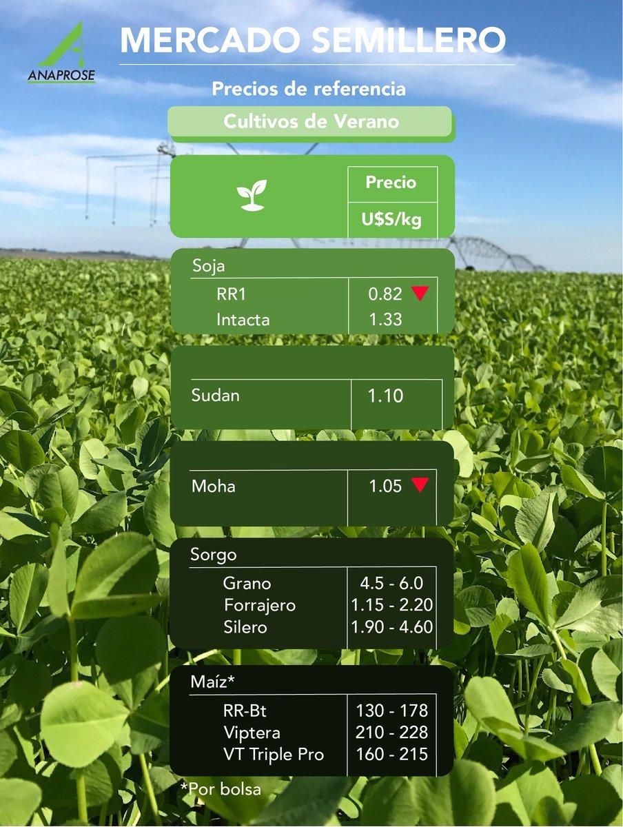 test Twitter Media - 🌱 Actualizamos los precios de referencia de los Cultivos de Verano, los invitamos a leerlos en nuestra web 👇 https://t.co/HXSlyiF0Yz https://t.co/Cxi3zIfhFw