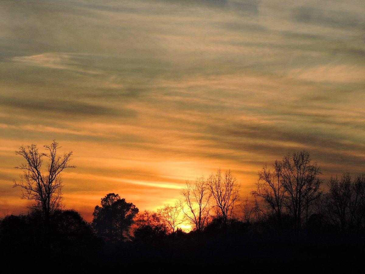 Sunset Cloudy Sky☀️☁️ #December2020 Photo By: Joseph Hill🙂📸☀️☁️  #sunset #bright #Cloudy #sky #evening #dusk #sunlight #trees #Autumn #beautiful #Wow #awesome #peaceful #daytime #WinterIsComing #sunsetphotography #VassNC #December https://t.co/XID5lPNebW