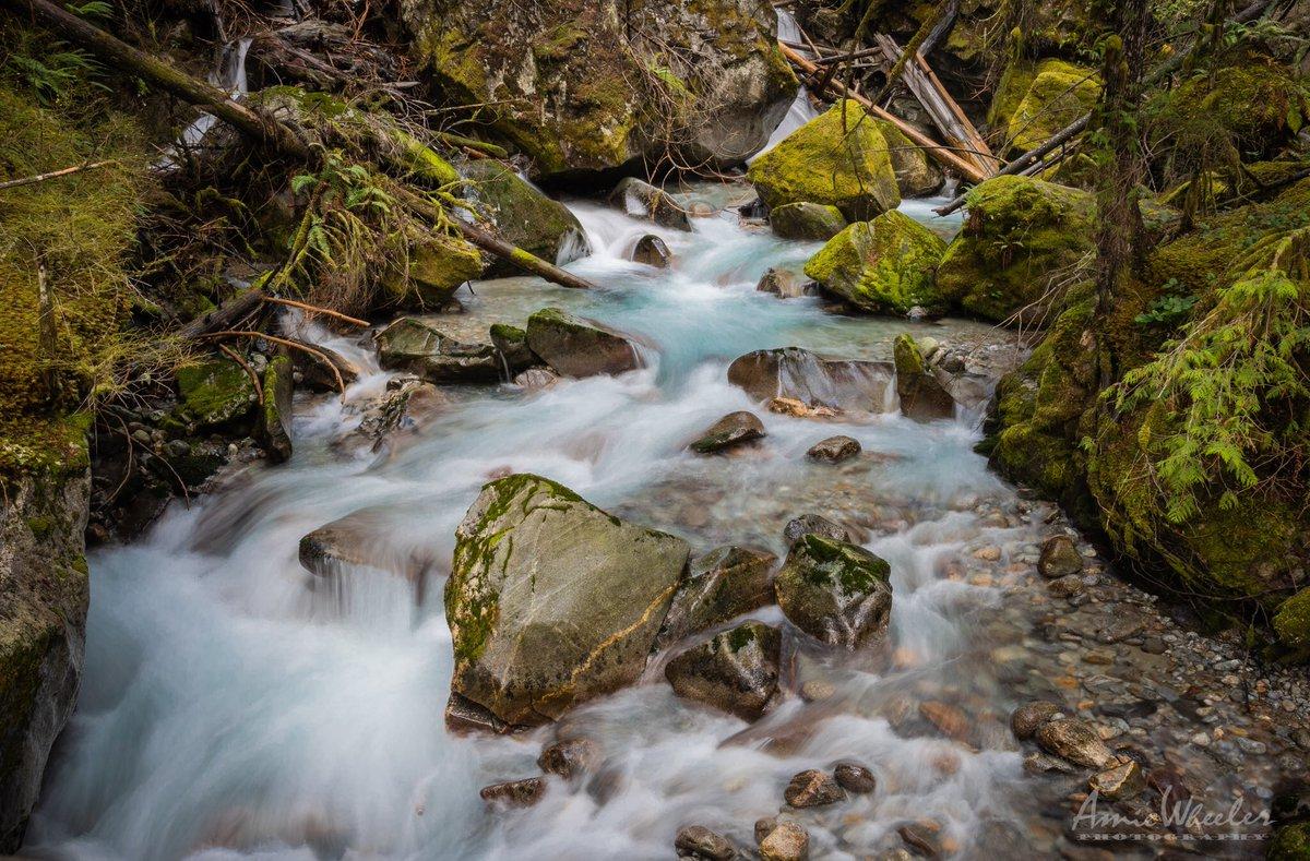 Newhalem earlier this month  #pnw #photography #beautiful #nature @wheeler244 @NP_Geek @ThePhotoHour @WildNWBeauty @RandySmall @OutdoorPhotoMag @NikonUSA @