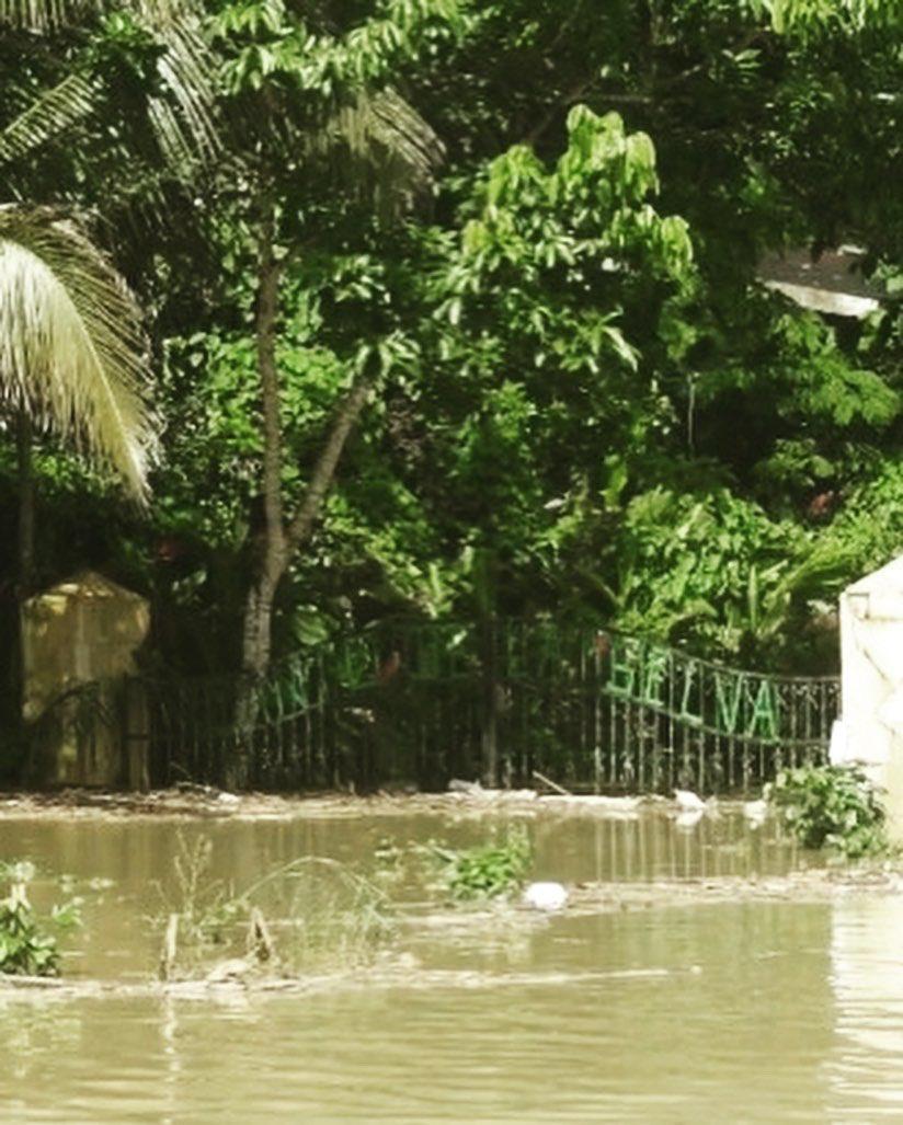 #CantodelaSelva, hotel ecoturístico comunitario, fue muy afectado por el #huracanlota, perjudicando los ingresos de la comunidad. Apoya su reconstrucción para que recuperen su fuente de ingreso y puedan seguir conservando la #SelvaLacandona!