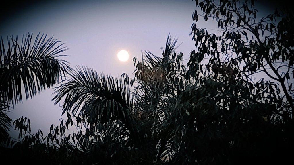 Capturing  Moon inside the glass #moon #SaturdayMorning #GuruNanakJayanti2020 #PhotoOfTheDay