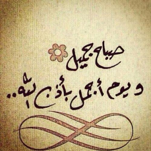 @QueenRania صباح الخير والسعادة🍃
