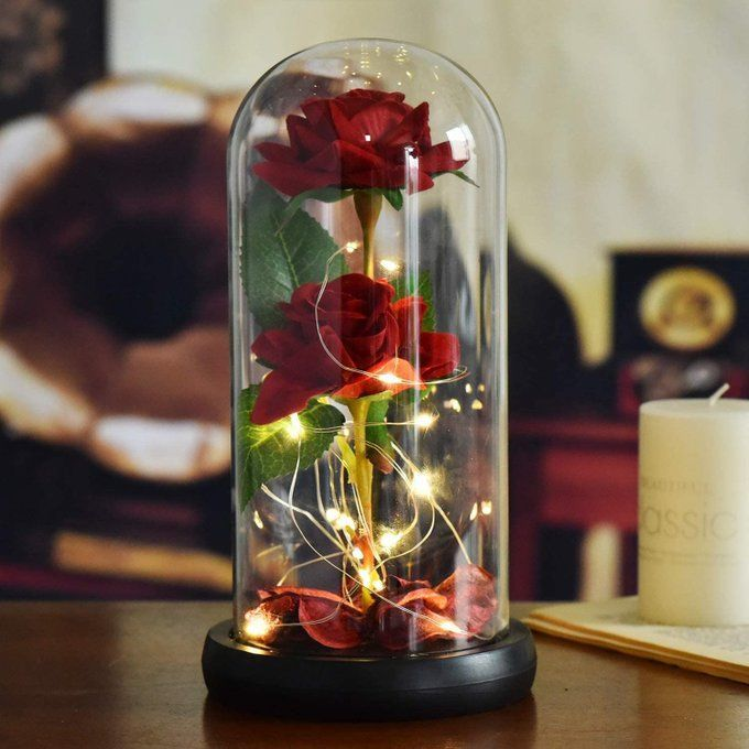 Beauty and the Beast Rose for $14.99!!  2