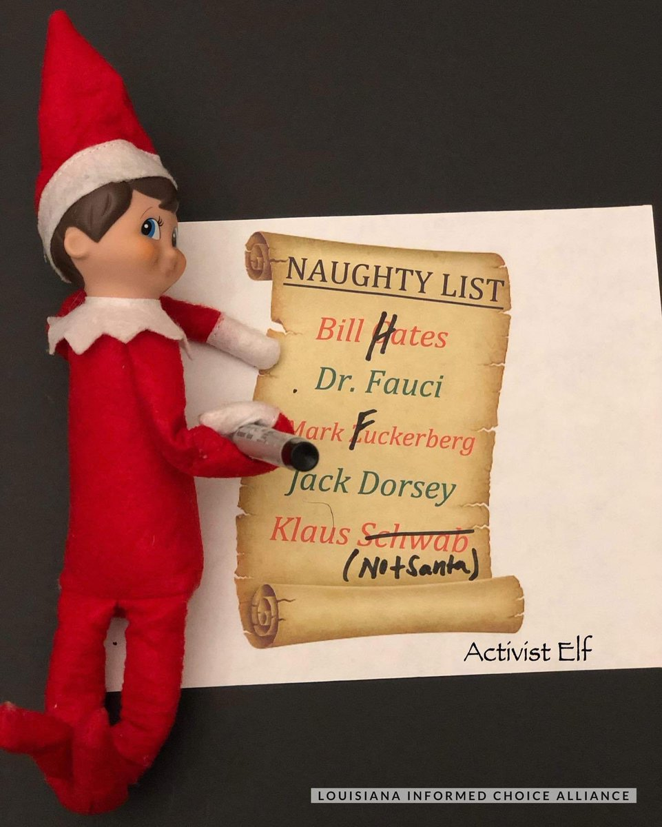 I just want you to research for your own More than you could ever know Make my wish come true All I want for Christmas is for you to learn censored truths!  #elfoftheshelf #activistelf #naughtylist #naughtyornice #alliwantforchristmas