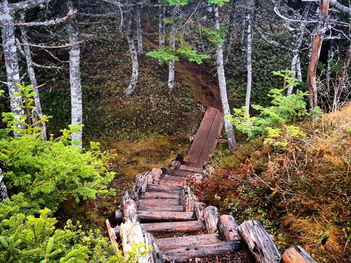 Going downstairs. :) #SaturdayMorning #ExploreNL