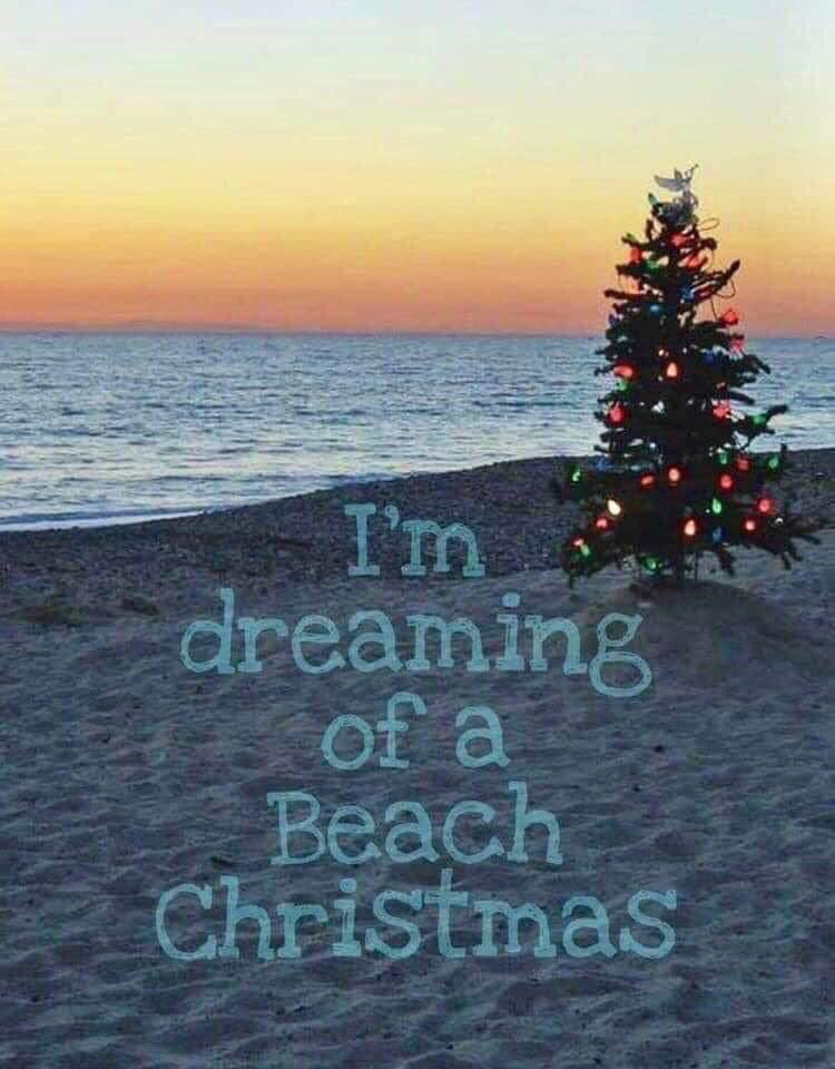 Don't dream it, do it! #Florida is open, so come get your #beach #vacation! Ask us about where to stay and play. #PrestigeTravelVacations