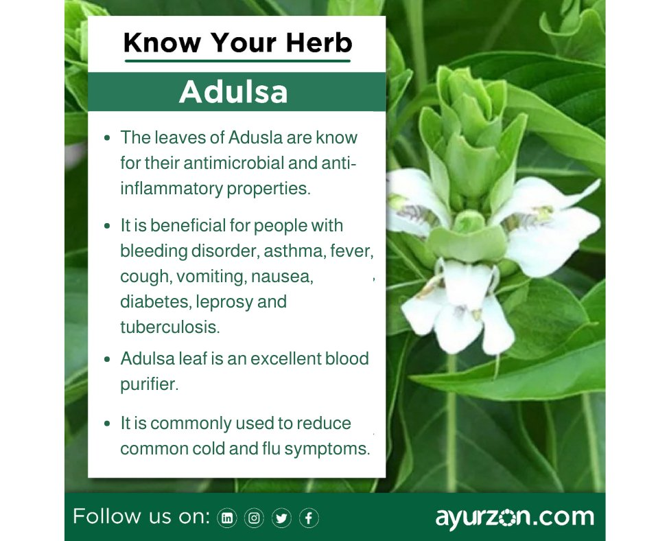 This herb is also used for treating bronchitis and dental ailments. Share it with someone you feel this could be helpful for.  #ayurvedic #ayurveda #ayurvedalifestyle #ayurvedicmedicine #ayurvedalife #ayurvedaeveryday #health #natural #yoga #healthylifestyle #ayurvedamedicine