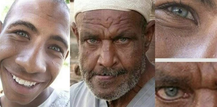 They call themselves Kaladshy, or the people of the castles, but are distinguished by the Nubians by the appellation of Osmanli (Turks). They have long forgotten their native language; but their features still denote a northern origin, and their skin is of a light brown colour,