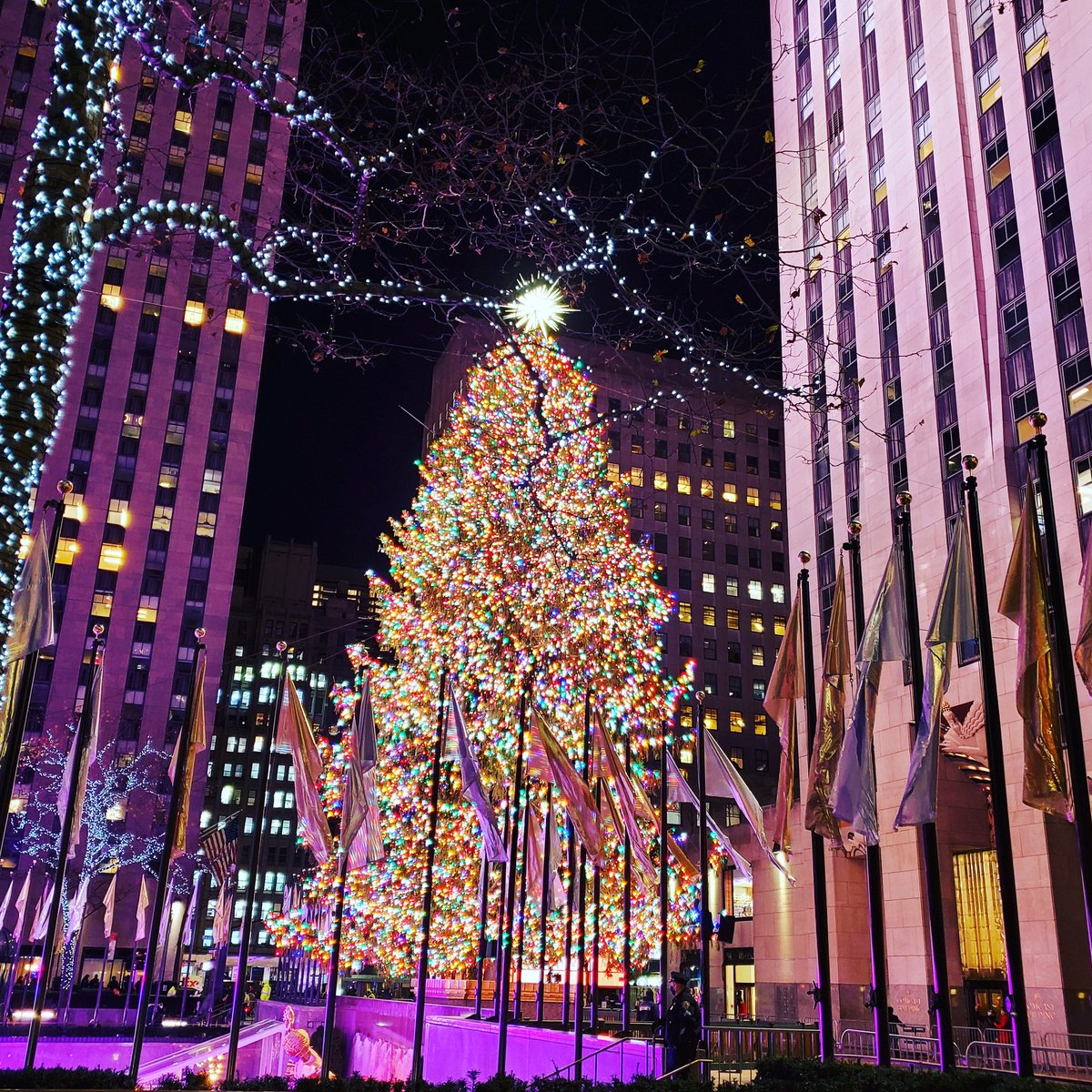 Looking fabulous both day and night. @30RockTree We know who runs this town.  🎄🎅👍 #30RockTree #nyc #RockCenterXmas