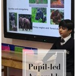 One of our Year 3 pupil asked to lead an assembly on the environment @GretaThunberg @AttenboroughSir #prepschool @LvKingston #NewMalden #confidence