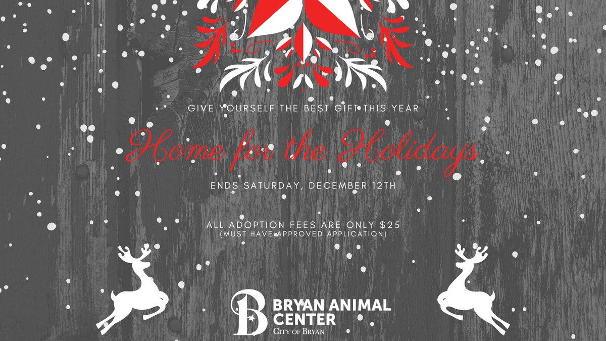 Our Home for the Holidays special ends this Saturday, December 12th. All adoption fees are only $25 with an approved application.  Its not to late! Visit  to submit an online application. #homefortheholidays  #Adopt #Shelterpets #happyholidays #cityofbryan