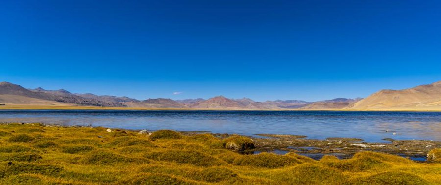 Tso Kar Wetland Complex