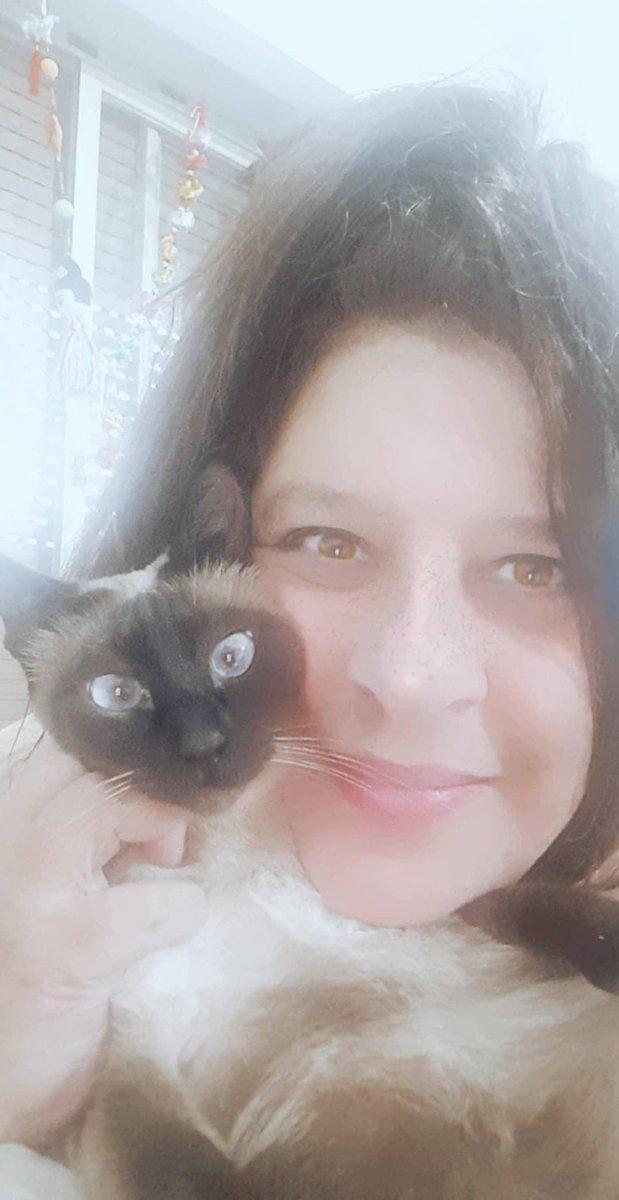 With my lovelie #kaia #siamese #siamesecat #siamesekitten #cat #catlife