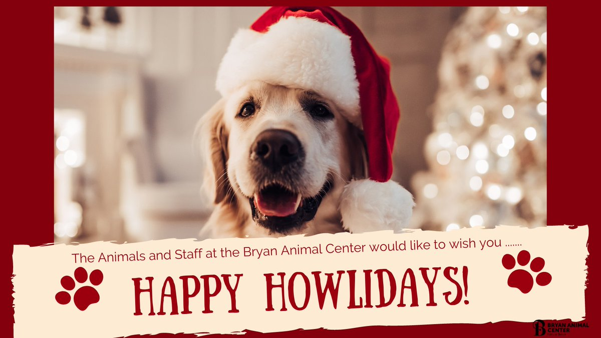 We hope your family has a wonderful holiday! #HappyHolidays #MerryChristmas #Happypawlidays #Happyhowlidays #BryanAnimalCenter #CityofBryan #Family #Adopt #Rescue
