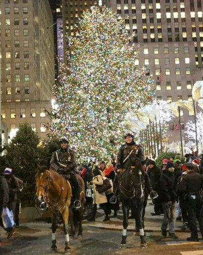 @EriCakes84 @zuzworskybe @CarriageCavalry @nyclass In other words, no one should EVER walk their dog/child/self in NYC due to due the risk of of snow, rain, cars, buses, ice, falling bricks, cracked sidewalks, sidewalk grates, or stray voltage.  #MerryChristmas #HappyHolidays #RockCenter #RockCenterXmas #CarriageOn #NYC