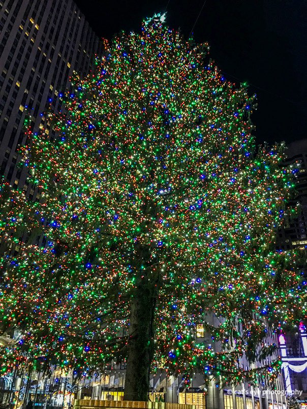 @RockCenXmasTree I'm just over here reminiscing about my first (and only) visit to see your beeeeauuutiful GLOW-ry with my beau a few years ago 🎄♥️ #RockCenterXMAS #BestTripEver #iloveyou #NYC