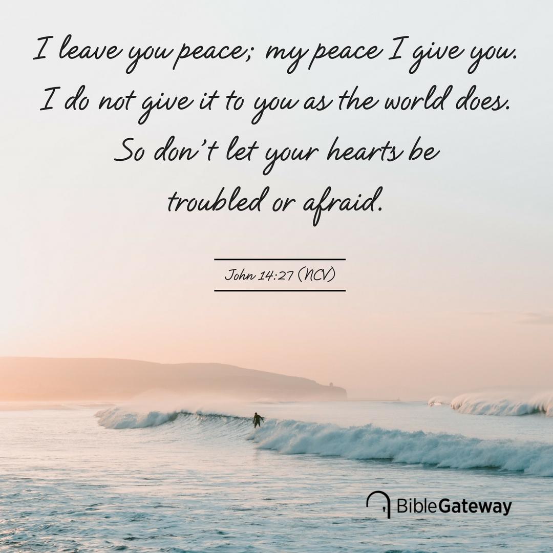 World my peace of