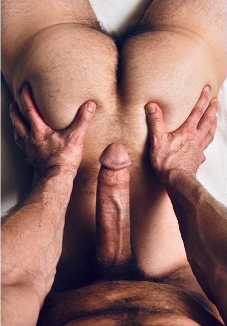 LOVE this view when I'm massaging a man's FURRY ASS 😜! #tantricmassage #hairyass #veinycock https://t