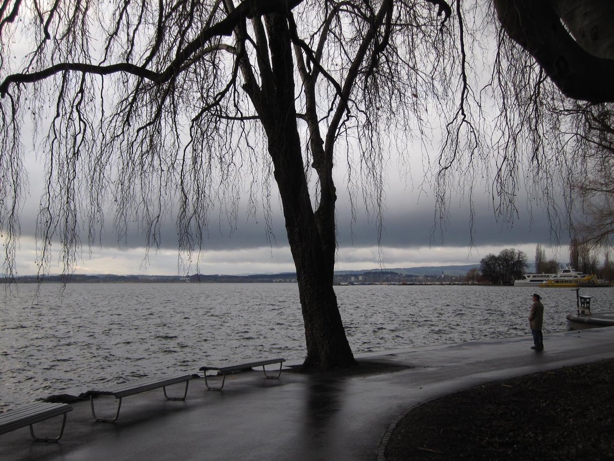 @hsntalal_tiwana #solitude Lake Zug
