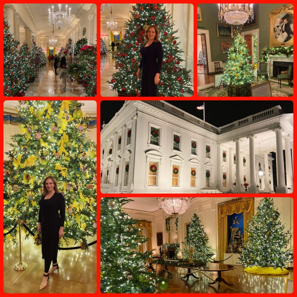 "First Lady Melania Trump @FLOTUS inspired a joyous and stunning ""America the Beautiful"" @WhiteHouse #Christmas celebration.  Truly, a wonderful experience to see!  May God bless America, our wonderful President and his entire family. #WHChristmas"