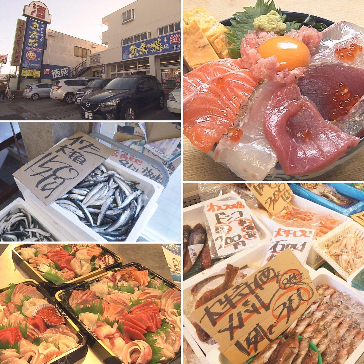 魚 広場 ナルミ 杉本
