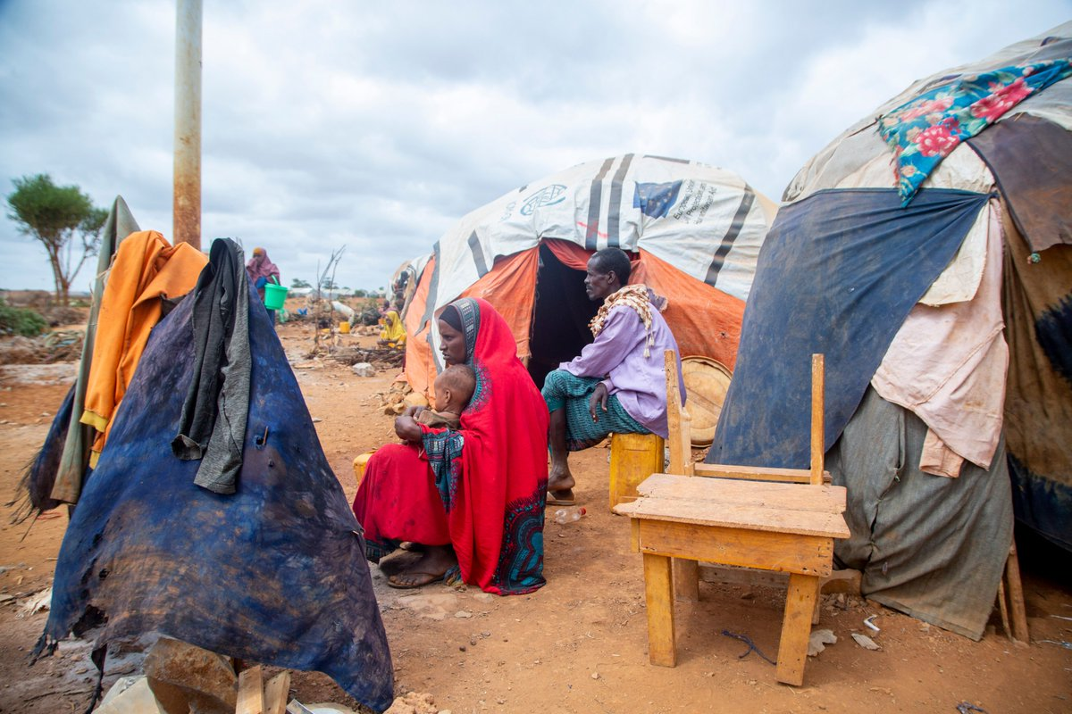 "IOM Somalia on Twitter: ""Information can save lives. ℹ️ In Somalia, a new  IOM toll-free hotline has been crucial to ensuring information reaches  everyone despite COVID-19 mobility restrictions. STORY 