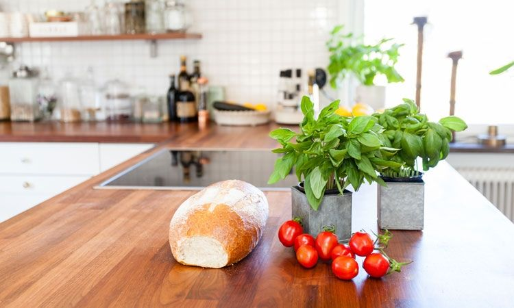 The Dubrovnik Times On Twitter The Kitchen Herb Plants We Most Struggle To Keep Alive Https T Co Veqfefjt5g