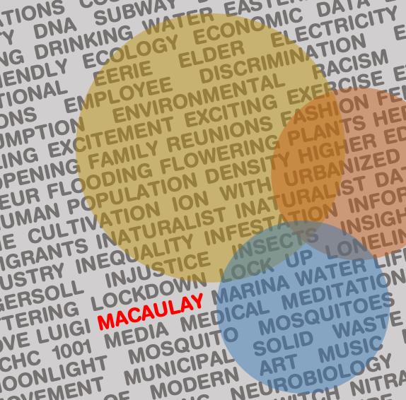 macaulayhonors photo