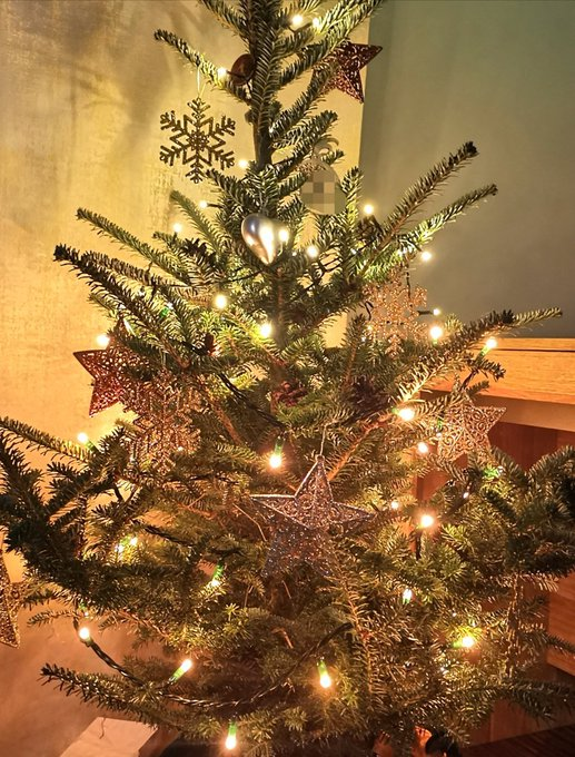 1 pic. Dear Santa... 🎅 please bring me under one of my fan's Christmas tree.. 🙈 https://t.co/nPwHzNY