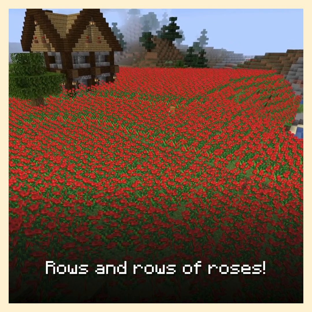 If that framed bucket of fish doesn't quite class up your home, why not add a couple of tasteful rose bushes? Perhaps two couples? Or how about three?  Learn all about this favourite gift of the very, very hopeless romantic:  ↣  ↢