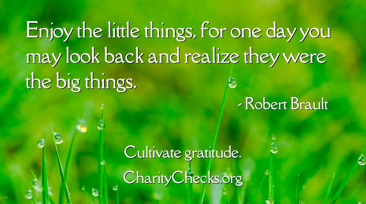Enjoy the little things, for one day you may look back and realize they were the big things! Cultivate #gratitude by giving Charity Checks this holiday season.    Please RT! #holidaygifts #Christmasgifts #employeegifts #kidgifts #RedefineGifting