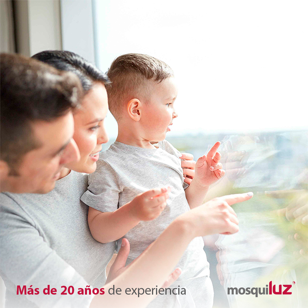 Mosquiluz con más de 20 años de #experiencia, ofrece un amplio catálogo de #mosquiteras para todo tipo de ventanas y puertas. https://t.co/DwiRW3PSV8 https://t.co/fNGQZuUTXh