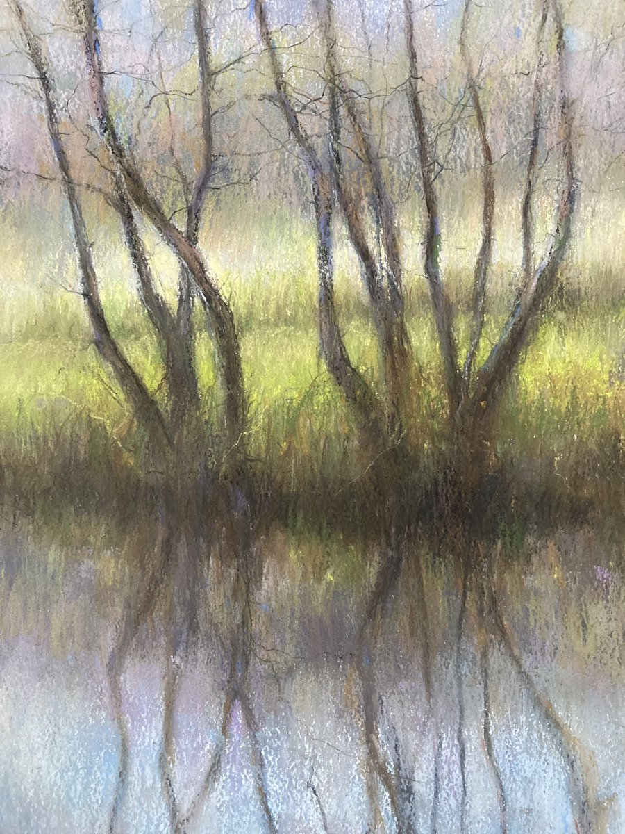 @PastelSociety exhibition  @mallgalleries online 22 December. Detail of new pastel treescape. @RoyalSocBritArt @MAFAartists @rbsagallery https://t.co/FwnxaE54um