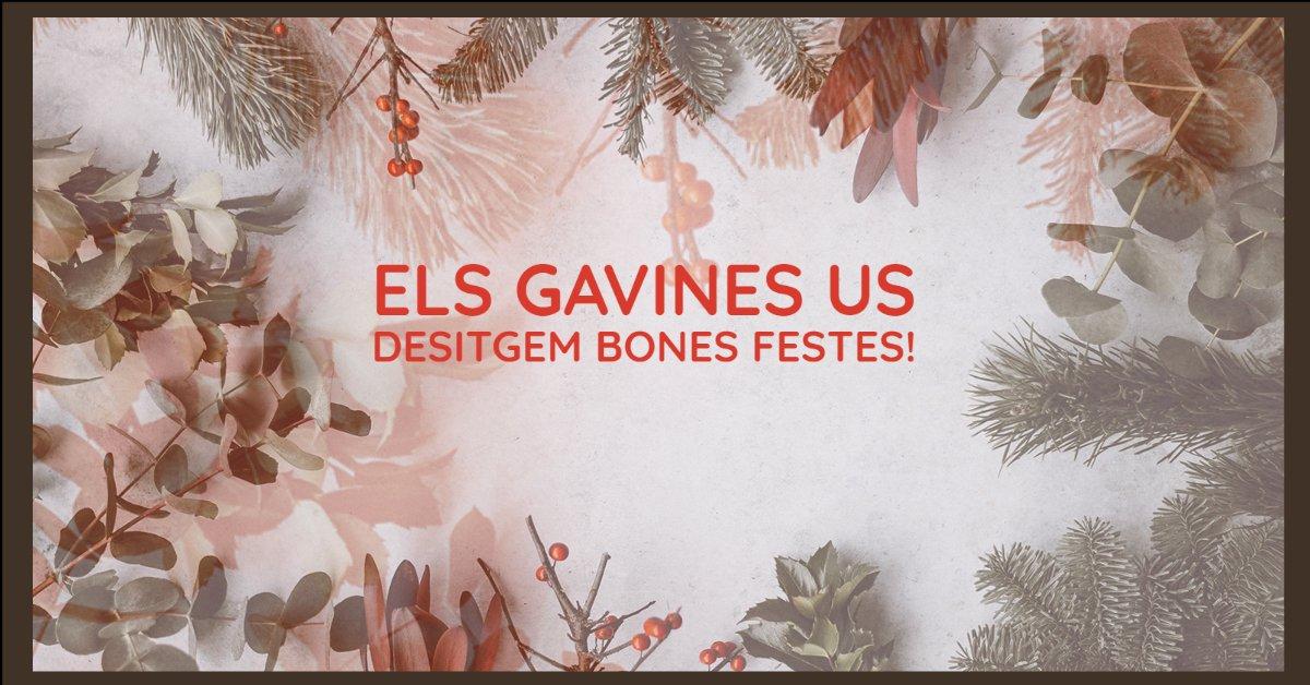 🎄Els Gavines us desitgem Bones Festes! No et perdis la nostra felicitació de Nadal  👉