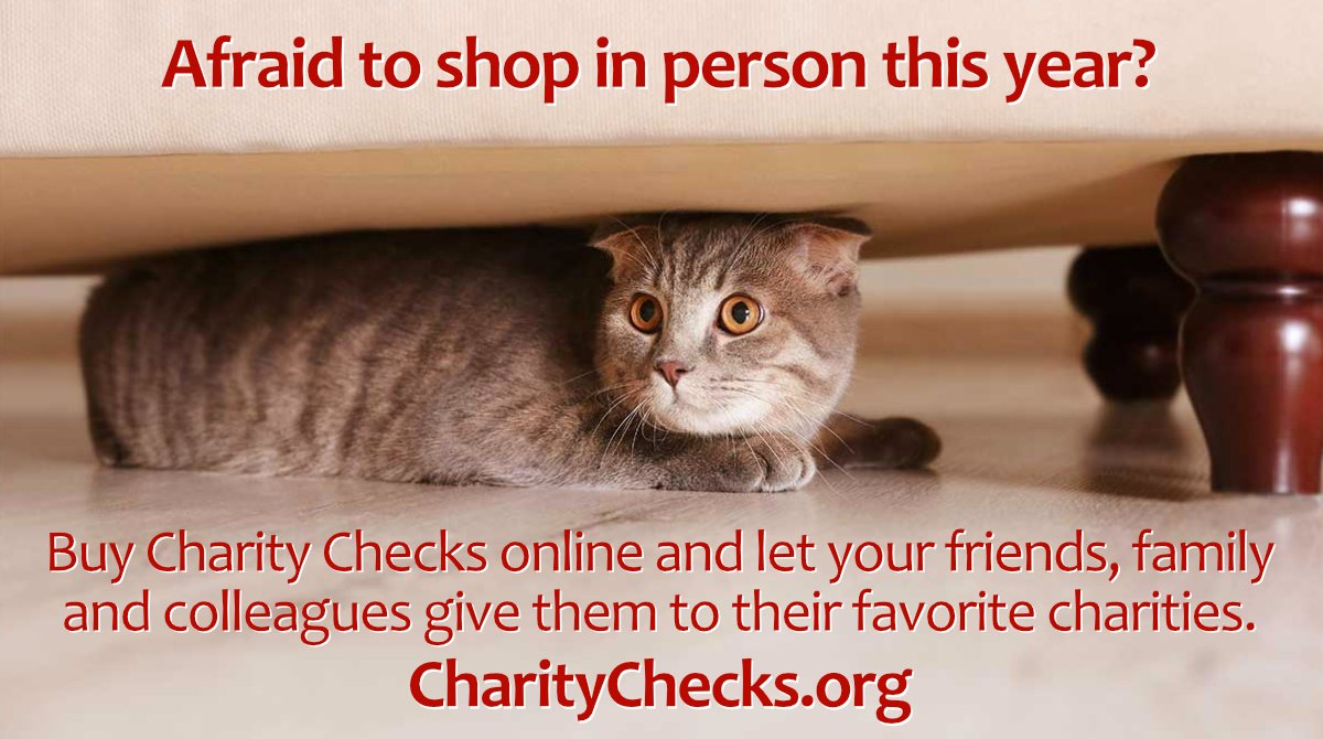 Stay safe while making a difference! Purchase Charity Checks online for family, friends and colleagues and they can give them to their favorite charities!  #holiday2020 #ChristmasGifts #gifts #RedefineGifting #giving #gifts2020 #2020gifts #employeegifts