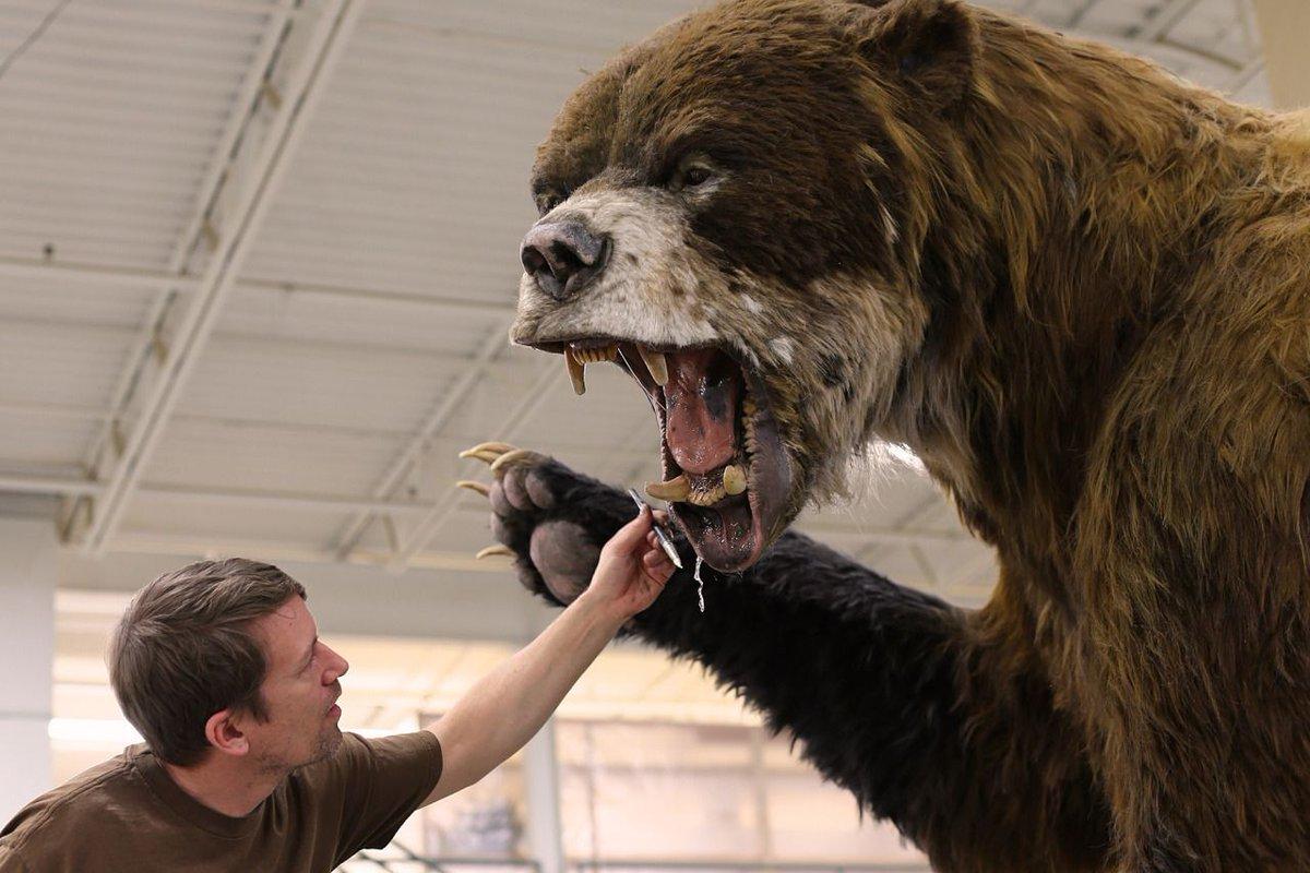 giant animals north america - HD1920×1279